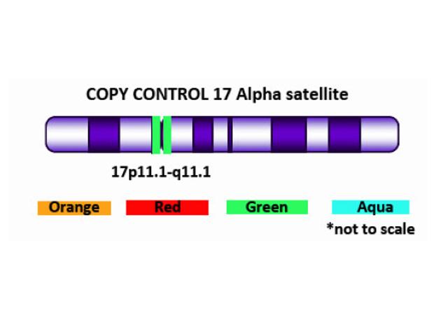 Copy Control 17 Green