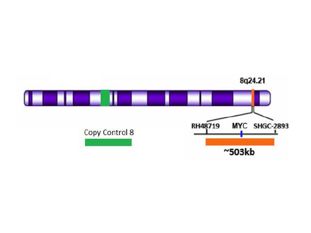 MYC (8Q24) ORANGE + COPY CONTROL 8 GREEN FISH PROBE