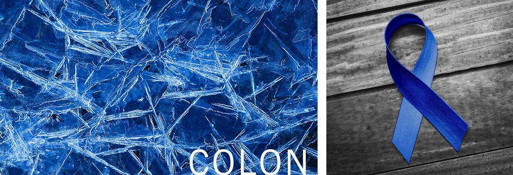 Colon Cancer Antibodies