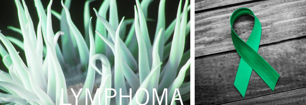 Lymphoma Cancer Antibodies