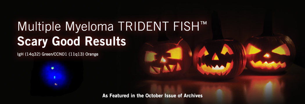 Multiple Myeloma TRIDENT FISH™ - Scary Good Results